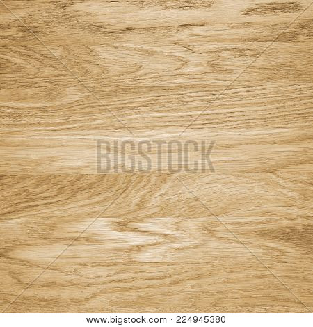Wood Texture Background. Part Of Big Table