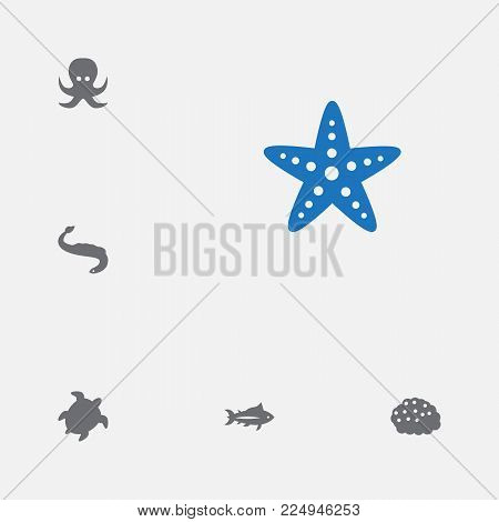 Set of 6 sea icons set. Collection of turtle, octopus, caviar and other elements.