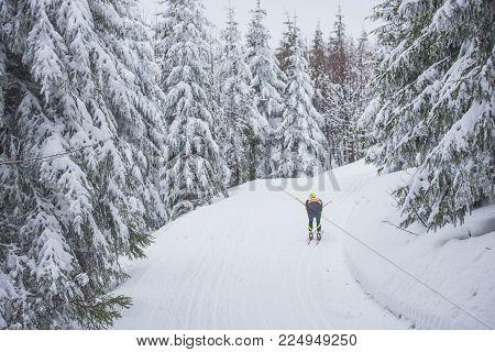 Professional Nordic Ski Race. White Winter Nature.