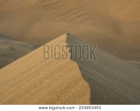 View of the summit of a sand dune in the desert, with shallow dept of field.