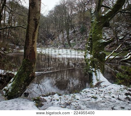 lake between two trees in snow covered forest with woodland reflected in the water