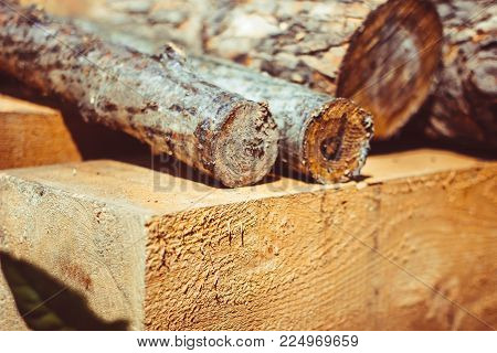 Logs, bark and chips are on the green in the Studio for products