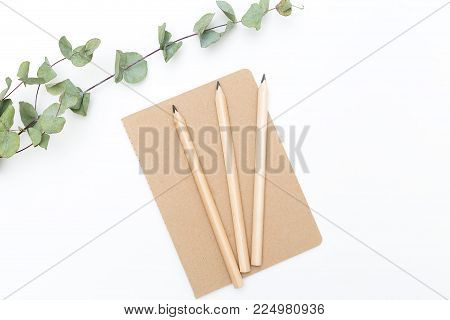 A notebook with a pencil and a sprig of eucalyptus on a white background. Flat lay