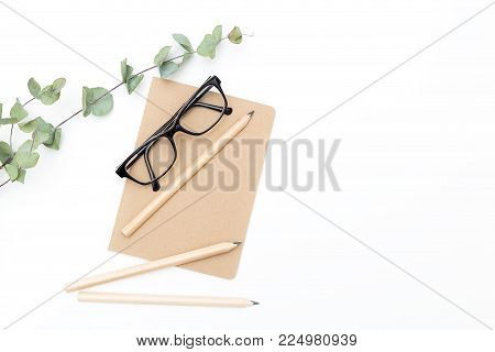 Notebook glasses and eucalyptus on a white background. Mininmalist style