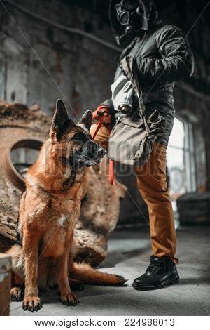Stalker in gas mask and dog in ruins, survivors