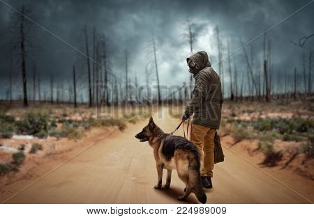 Stalker and dog, survivors after nuclear war
