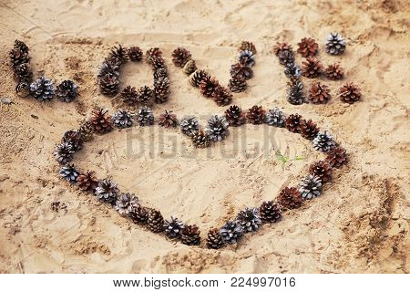 Word Love and a Heart laid of cones on warm sand