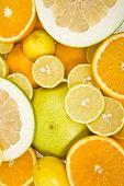 citrus background poster