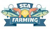 Sea Farming Aquaculture, illustrated vector logo badge with fish, shrimps, seashell and ribbon. poster