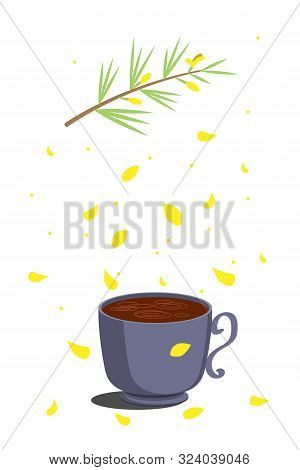 Rooibos Tea. Hot Herbal Traditional Drink Of Red Color In A Gray Cup On Top Of A Rooibos Plant And C