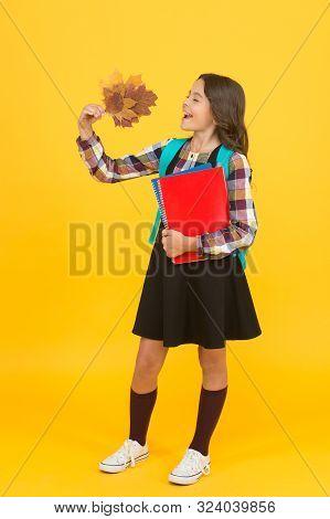 Beginning Of Autumn Semester. School Education Concept. Girl Enjoying Autumn Season. Back To Studyin
