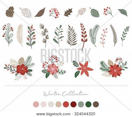 Botanical Christmas, Xmas Elements, Winter Flowers, Leaves, Birds And Pinecones Isolated On White Ba