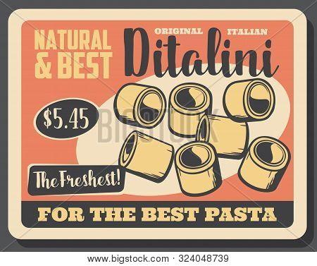 Ditalini Pasta In Shape Of Small Tubes. Vector Traditional Italian Cuisine Food, Tubettini. Short Ma