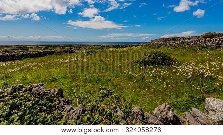 Landscape Of The Irish Countryside With Green Vegetation On The Island Of Inis Oirr With The Atlanti