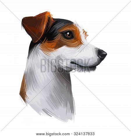 Jack Russell Terrier, Jack Russell, Jrt, Jack Dog Digital Art Illustration Isolated On White Backgro