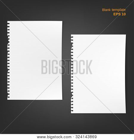 Vector Torn Block Note Papers With Fold Edges. 2 Squared And Lined Blanks With Shadows On Grey Backg