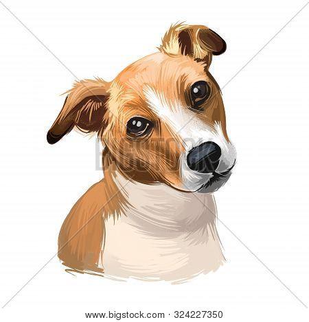 Plummer Terrier Dog Portrait Isolated On White. Digital Art Illustration Of Hand Drawn Dog For Web,