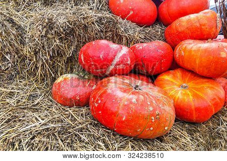 Rows Of Pumpkins On Top Of Hay Bales At Country Market