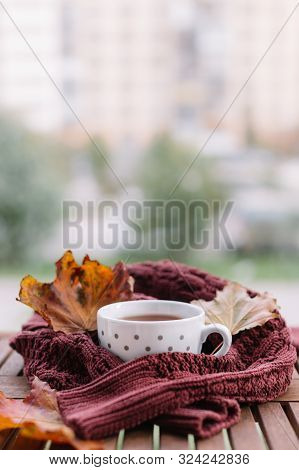 Cropped Photo Of White Cup With Black Tea And Mauve Sweater Strewn With Orange Maple Leaves On Woode