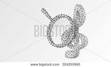 Magnifying Glass On Treble Clef. Music Note Analysis, Melody Key Search, Classic G-clef Analytics Co