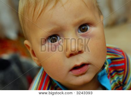 Cute Small Boy