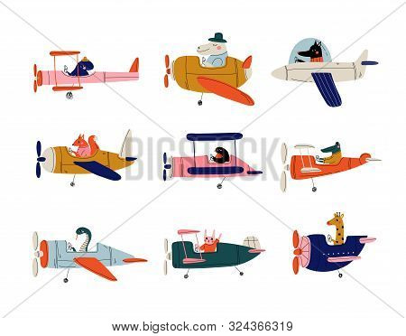 Collection Of Cute Animals Pilots Flying On Retro Planes In The Sky, Octopus, Bird, Crocodile, Bunny