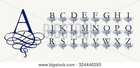 Vintage Vector Set . Calligraphic Capital Letters With Curls, Stylized Arabic Knit For Monograms And