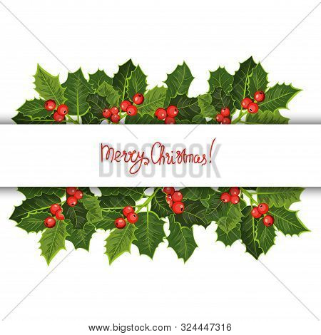 Merry Christmas Card. Holly Tree Greeting Cards Template, Winter Holidays Greetings Poster With Bran