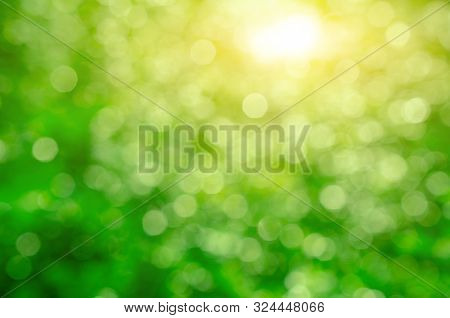 Green Nature Bokeh Abstract Background, Blurry Green Nature Background