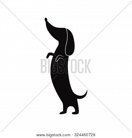 Dachshund Dog Standing On Hind Legs - Flat Black Silhouette Isolated