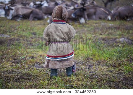 A Resident Of The Tundra, The Extreme North, Yamal, The Pasture Of Nenets People, Children On Vacati