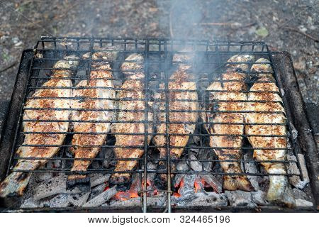 Barbecue Grilled Fish In The Garden. Health