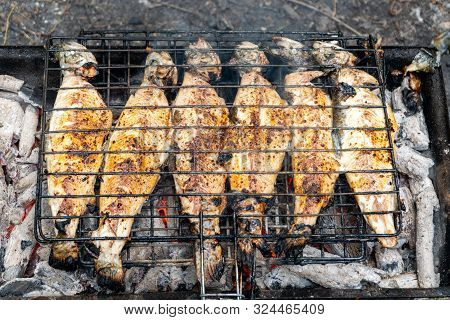 Barbecue Grilled Fish In The Garden, Health
