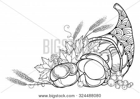 Vector Outline Cornucopia Or Horn Of Plenty Full Of Pumpkin, Berry, Wheat And Maple Leaf In Black Is
