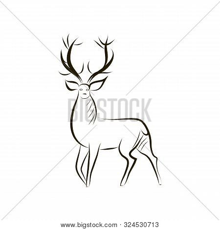 Contour Silhouette Of Graceful Deer. Black - White Vector Deer Silhouette Isolated. Idea For Tattoo,