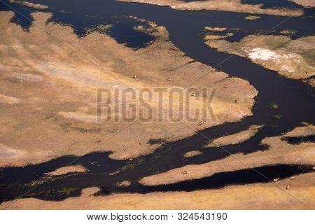 Okavango Delta Aerial With Grazing Antelopes, Dry Savanna Landscape And Watercourses