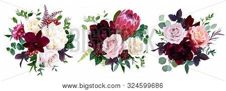 Luxury Fall Flowers Vector Bouquets. Protea Flower, Peachy Coral Garden Rose, Burgundy Red Peony, Da