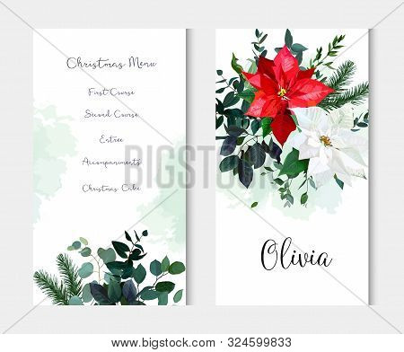 Red And White Poinsettia Flowers, Christmas Greenery, Emerald Eucalyptus, Seasonal Plants Vector Des