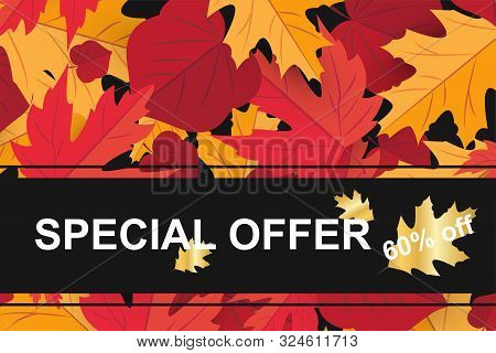 Season Sale Banner With Fall Autumn Leaf Concept. Template Holiday Banner For Season Sale, Thanksgiv