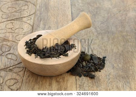 Bladderwrack herb in  mortar with pestle used in herbal medicine to treat obesity, joint pain, heartburn, constipation, arteriosclerosis digestive disorders. Fucus vesiculosus.