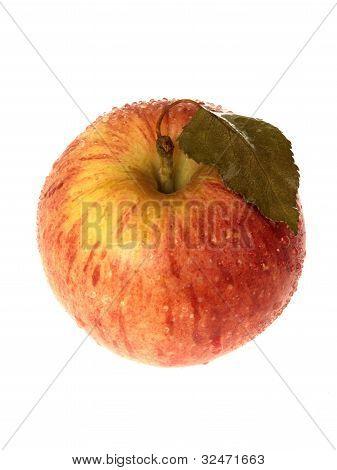Red Braeburn Apple