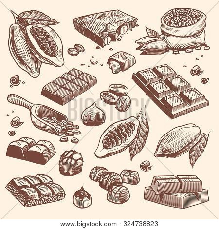 Sketch Cocoa And Chocolate. Cacao And Coffee Seeds And Chocolate Bars And Candies. Hand Drawn Sweets