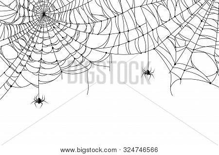 Cobweb Background. Scary Spider Web With Spooky Spider, Creepy Arthropod Halloween Decor, Net Textur