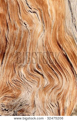 twisted and contorted distressed wood grain background texture poster