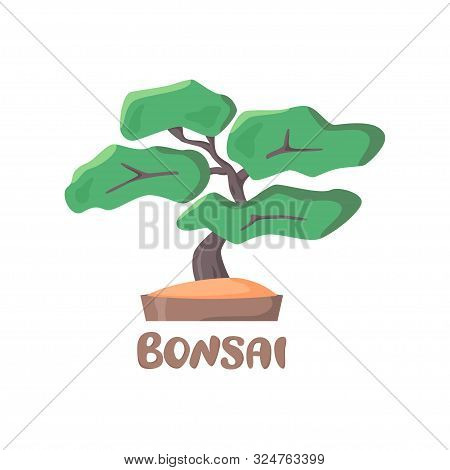 Bonsai Illustration And Lettering In Flat Style, Small Tree In Pot, Vector