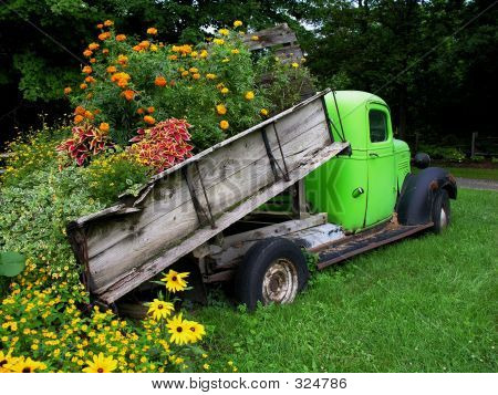 Truck Load Of Flowers