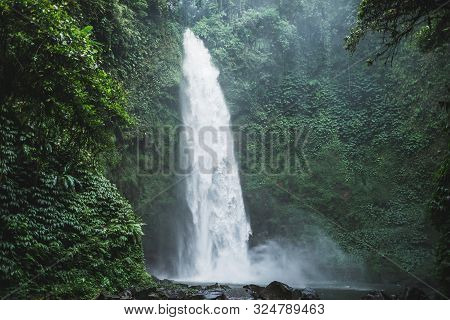 Powerful Nung-nung Bali Waterfall In Rainforest. Travel Concept.