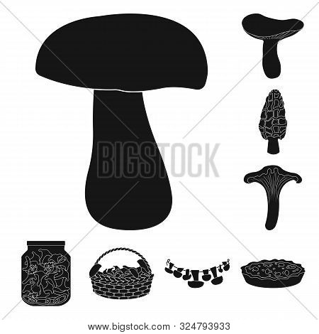Vector Design Of Variety And Ingredient Icon. Collection Of Variety And Food Vector Icon For Stock.
