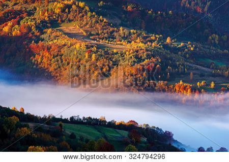 Beautiful Autumn Landscape With Valley Fog. Wonderful Nature Scenery At Sunrise. Trees In Colorful F