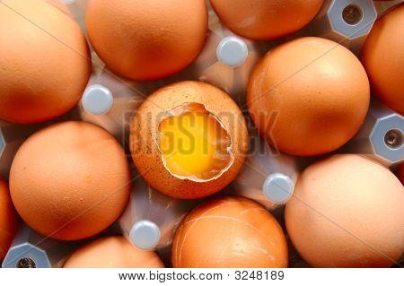 A Set Of Eggs